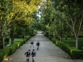Avenida del Jardin